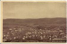 Bird's Eye View of the North Side of Sidney NY Postcard