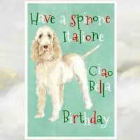 Italian Spinone Dog Greetings Card, Spinone Dog Card, Funny Dog Greetings Card