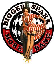 8133d83de83c7f Waterslide Decal Sticker Pinup Girl Spark Plug Garters Stockings High Heels