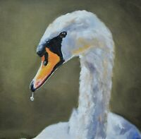 Fine James Coates Original Oil Painting Of A Swan (British Wildlife Art)