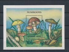 LM35648 Ghana plants flora nature mushrooms good sheet MNH