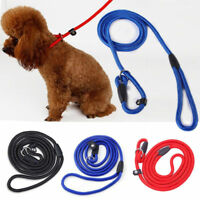Strap Strong Nylon Rope Pet Dog Slip Training Leash Walking Lead Collar 3 Colors