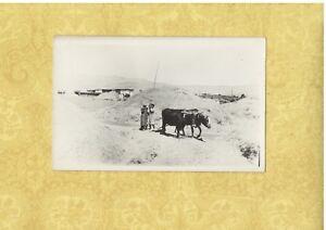 X Lebanon 1901-39 rare RPPC real photo postcard ROAD TO BEIRUT KIDS AND OX
