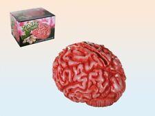 Novelty Zombie Brain Money Box Savings Piggy Bank Money Change Notes Joke Scary