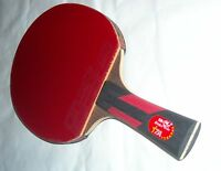 Double Fish mid level Table Tennis ping pong paddle for serious player +case/bal