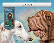 Togo 2018 MNH Dogs Black and Tan Coonhound 1v S/S Dog Pets Animals Stamps