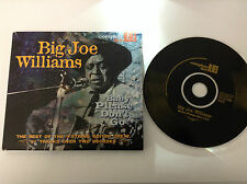 Big Joe Williams - Baby Please Don't Go [Snapper] (2004) CD