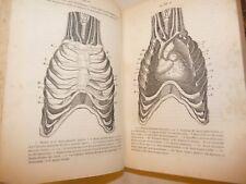 MEDICINA - RONCATI: DIAGNOSI MALATTIE Petto Ventre Sistema Nervoso 1868 Napoli