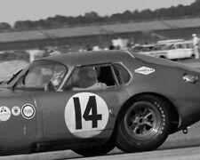 Vintage 8 X 10 1964 Daytona Shelby Cobra Daytona Coupe Bob Holbert