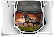 Pferd Hengst Motorhaube Auto-Aufkleber Steinschlag-Schutz-Folie Airbrush Tuning