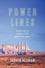 Power Lines: Phoenix and the Making of the Modern Southwest (Politics and Societ