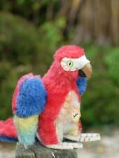 BEAUTIFUL SO LIFE LIKE, VINTAGE OLD STEIFF PARROT 'LORA' WITH CHEST LABEL 1960'S