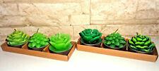3 x Deko Teelichter Set Schmuckkerzen Kerzen Kaktus Lotus Pflanzen Natur grün
