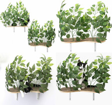 New listing On2Pets Cat Furniture Canopy Shelves for Climbing, Playing and Relaxing Green