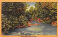 """Bucyrus Ohio """"Greetings From"""" river view linen antique pc Z45765"""