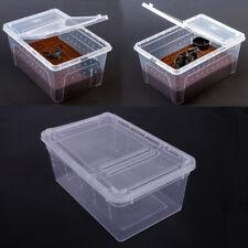Neu Klar Acryl Box Insekt Faunarium Fütterung Brutbox für Terrarium Reptil Tank