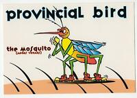 FUNNY MOSQUITO POSTCARD -  PROVINCIAL BIRD POSTCARD - AEDES VEXANS POSTCARD