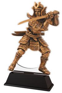 MARTIAL ARTS SAMURAI ACRYLIC TROPHY KARATE FIGHT KENDO *FREE ENGRAVING* 200mm