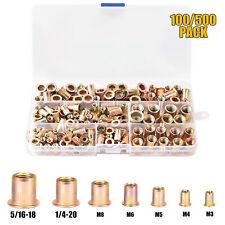 100500pcs Rivet Nut Kit Flat Head Threaded Insert Nutsert Assort Metricsae