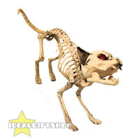 LIFESIZE CAT ANIMAL SKELETON HALLOWEEN PARTY HORROR DECORATION PROP MAKES SOUND