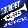 TWO for ONE TRUMPET JUICE VALVE OIL also STICKING CORNET FRENCH HORN VALVES