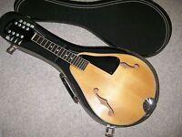 mandolin Sterling for restoration