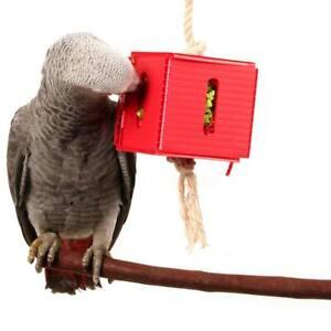 Foraging Cube Hanging Parrot African Grey Conure Quaker Caique Bird Toy Medium