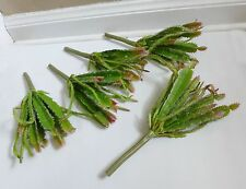 Artificial Flocking Plants Set of 5 Cactus Succulent Grass