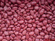 Nüsse Süß für Automat Spardose lecker kandiert Zucker rot Erdnuss 2 kg