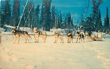 Espanola Ontario~Team of Huskies~Dog Sled~1950s Postcard