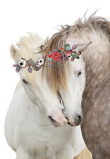 Beautiful Horse Love Friendship Flowers White Flower Country Canvas Print A3