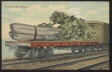 Postcard MICHIGAN/MI  L.S.& M.S. Railroad Flatcar Celery Exaggeration 1907