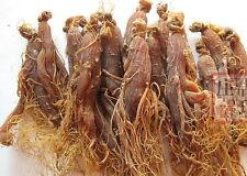 200g korea red ginseng root/Panax ginseng/ninjin/insam/Radix Ginseng root tail