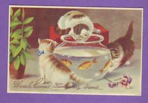 LATVIA LETTLAND CATS AND AQUARIUM WITH FISH happy Birthday VINTAGE POSTCARD 257