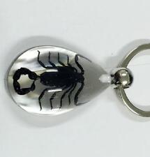 2 pcs Black Scorpion Lucid Fashion Keychain
