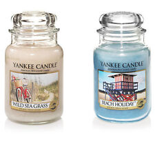 Holidays Large Scented Candles Lights