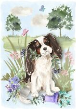 "Cavalier King Charles Spaniel (4"" x 6"") Blank Card / Notelet Design By Starprint"