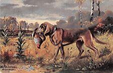 1908 Postcard of Bloodhound Retrieving Bird - Signed Artist