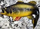 Grain Belt Beer Small Mouth Bass Fish Rare Vtg Plaster Chalkware Sign