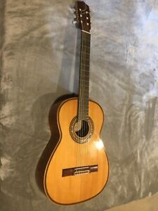 Flamenco Guitar / Classical guitar