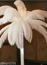 New 100pcs 30-35cm/12-14inch White OSTRICH FEATHERS for Wedding patty