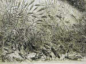 MINNESOTA GRASSHOPPER PLAGUE WHEAT FIELD 1874 Art Print Matted