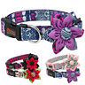 Fashion Big Flower Dog Collars for Small Large Girl Dogs Pet Show Necklace Gifts