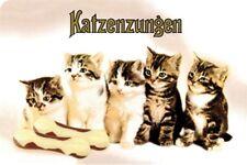 Katzenzungen Babykatzen Collage - Blechschild 20x30 cm PC 300/208 Cat Katze