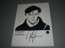 Roddy Frame Aztec Camera  signed Autogramm autograph  8x11 inch photo in person