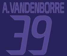 Vanderborre #39 Anderlecht 2013-2014 Away Football Nameset for shirt