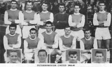 PETERBOROUGH UNITED FOOTBALL TEAM PHOTO>1964-65 SEASON