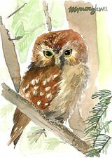 ACEO Limited Edition- Nite owl   - Art print of an ACEO watercolor