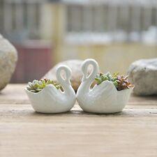 Swan Shape Succulents Planter (set of 2), Mini Plants Pot,Decoration,Swan Design