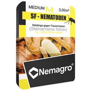 Nemagro® SF-Nematoden M - 1,5mio für 15 Pflanzen - Erste Wahl gegen Trauermücken